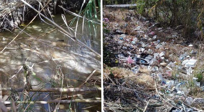 Guanajuato: persiste descargue de aguas negras en la Cieneguilla (Periódico Correo)