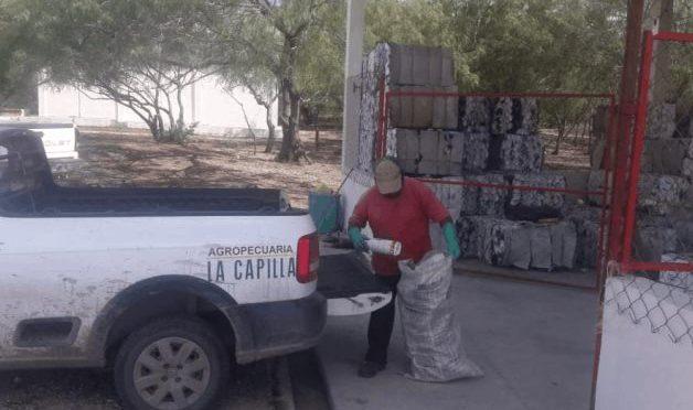 Tamaulipas: Piden no tirar envases de los agroquímicos (El Mañana)