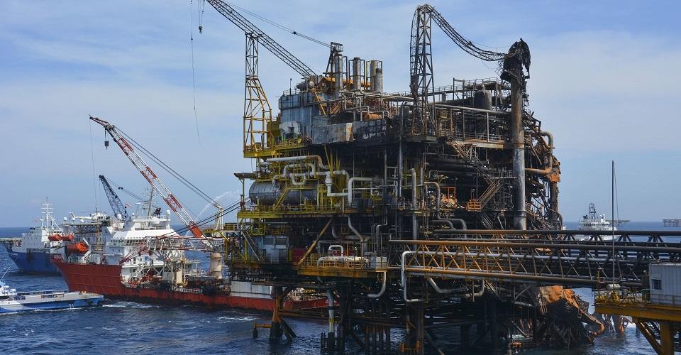 México: Para mitigar contaminación por hidrocarburos se tendría que reforestar el país dos veces: advierte estudio (Animal Político)