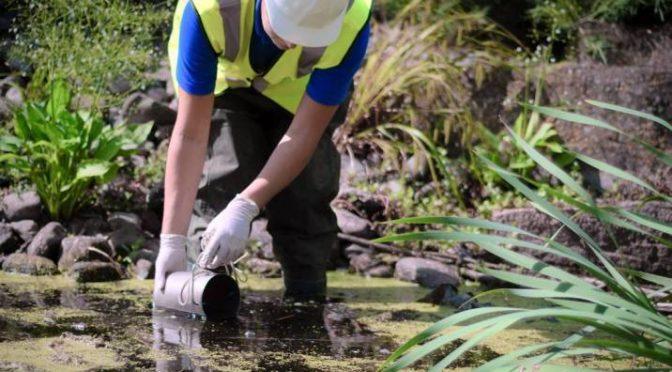Científicos internacionales advierten del riesgo real y potencial de los contaminantes emergentes en el agua (NCYT)