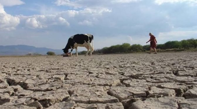 Michoacán:  Auguran severa temporada de estiaje en Tierra Caliente (Quadratin)