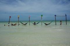 CDMX: Mantiene Semarnat protección de isla Holbox (La Jornada)