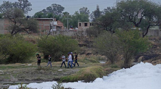 Guadalajara: Contaminación del Santiago mata a 14 en 2020, denuncian (Milenio)
