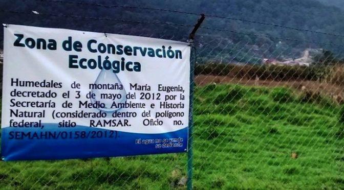 Chiapas: Defender humedales (Diario de Chiapas)