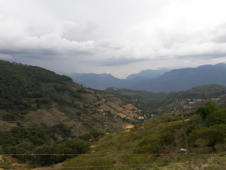 Querétaro: se seca manantial en San Joaquín, dos mil sin agua (Noticias de Querétaro)