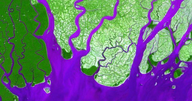 Las actividades humanas han cambiado la forma de los deltas fluviales (Noticiero Universal)