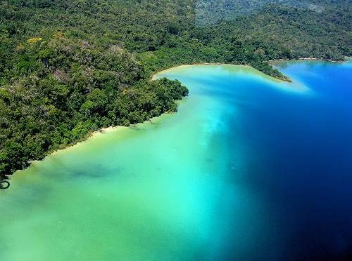 Chiapas: la Reserva de Montes Azules cumple 42 años!