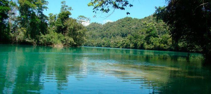 Chiapas: ¡La reserva de Montes Azules cumple 42 años!