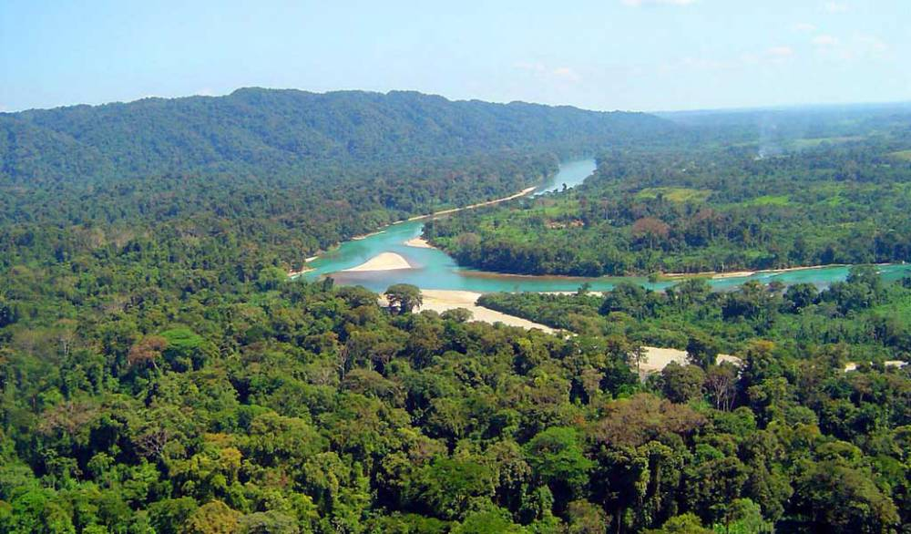 La Riqueza en un Área Natural Protegida: la Biosfera de Montes Azules (infografía)