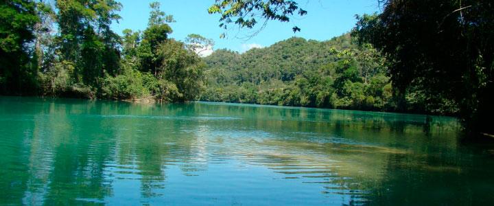 Se cumplen 42 años del decreto presidencial que protege la Reserva de la Biosfera  Montes Azules