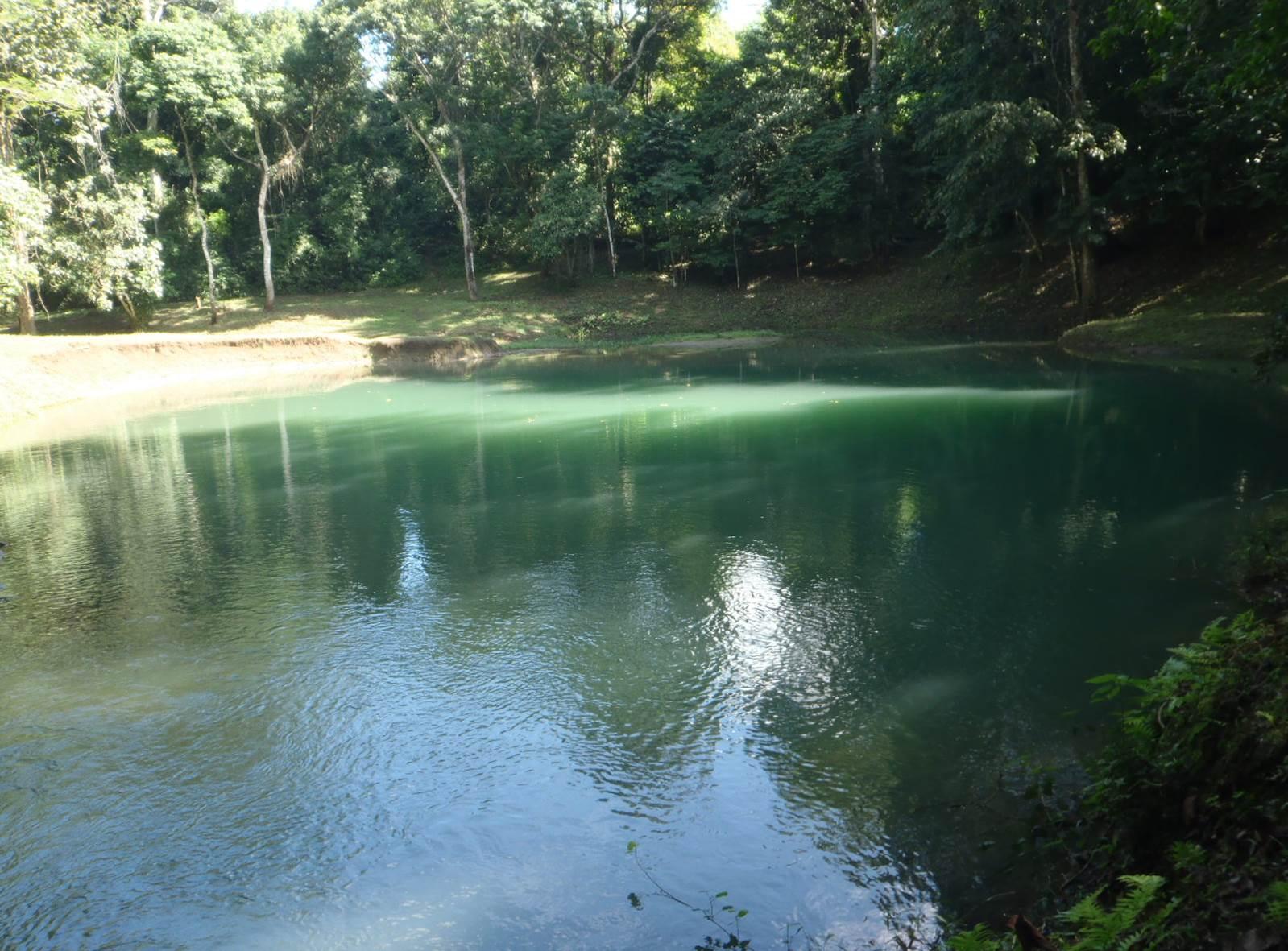 Reserva de la Biofera Montes Azules (vídeo)