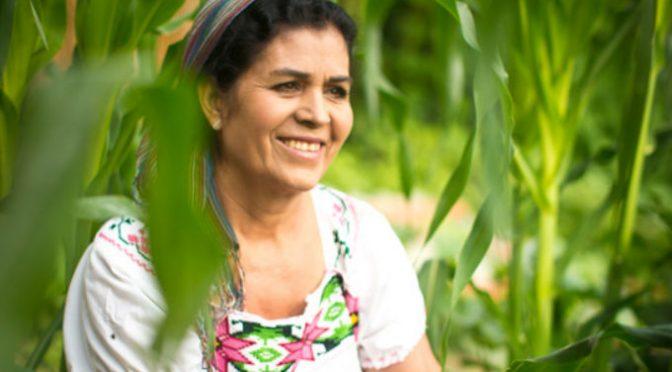 México: Crean comunidades resilientes con ecotecnologías (Revista Cambio)