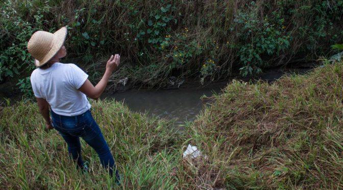 Puebla: Gobierno reserva el proyecto de drenaje en río Metlapanapa por cinco años (pie de pagina)