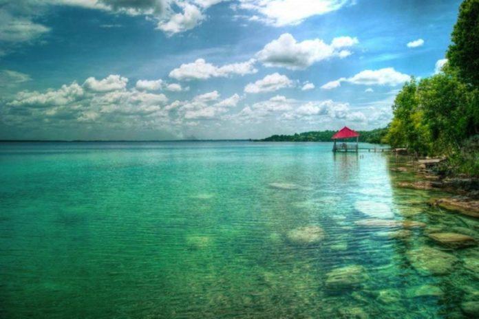 Aspectos ecológicos de amebas testadas, cladóceros, ostrácodos y quironómidos en dos cuerpos de agua impactados: Lago Ocotalito, Chiapas y Laguna de Bacalar, Quintana Roo, México