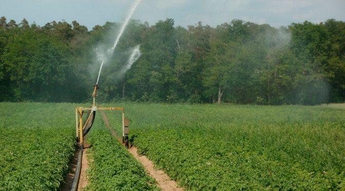 Baja California: medir el agua de uso agrícola, el gran dilema (La Voz de la Frontera)