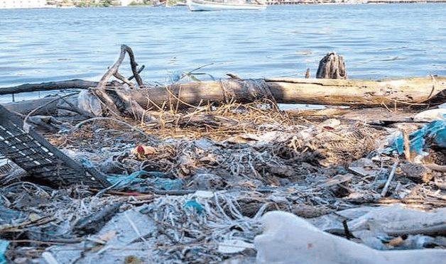 Tamaulipas: Ríos y lagunas muy contaminados (La Tarde)