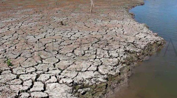 Veracruz: Sectores productivos en problemas por la falta de lluvia, en Pánuco (Vanguardia)