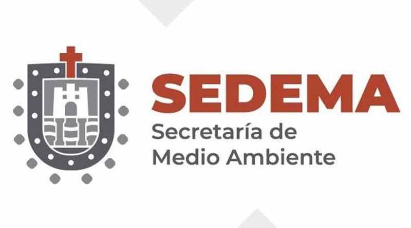 Servicio Social o Praticas profesionales: SEDEMA