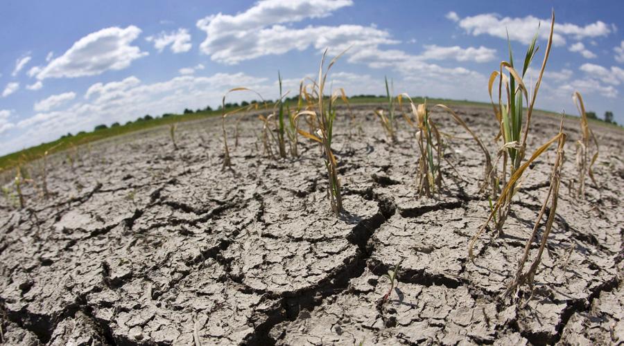 Oaxaca: Pegarà escasez de lluvia en la mayor parte del estado (El Imparcial)