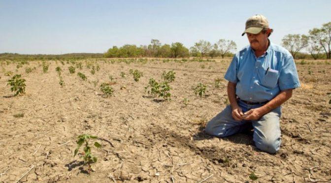 Chile: Informe revela dramática situación del agua: comunas más afectadas por la escasez hídrica son la de mayor inequidad social(El Mostrador)