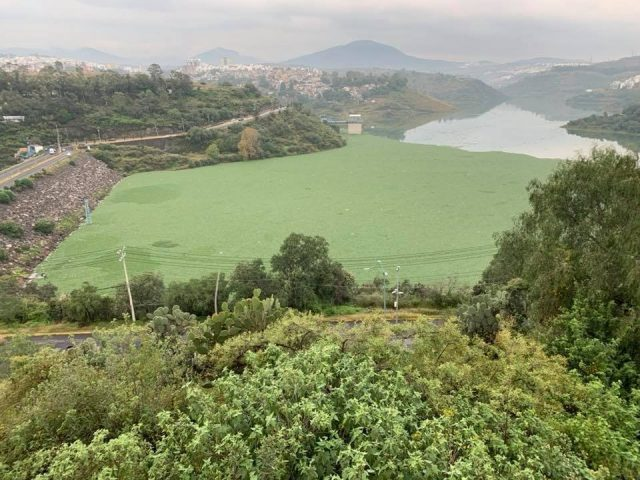 Estado de México: contaminan a la presa Madín (Diario Basta!)