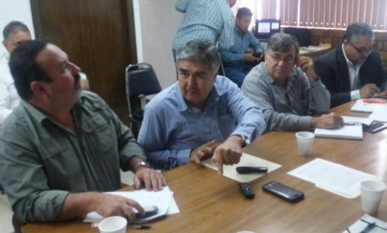 Tamaulipas: En riesgo de perderse 300 mil hectárias  (contacto)