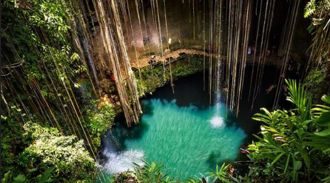 Cenotes de Yucatán presentan coliformes fecales: Sergio Grosjean (La Jornada Maya)