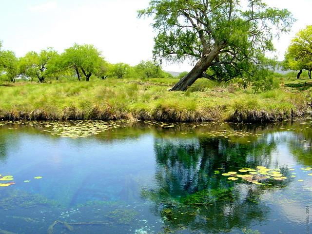 San Luis Potosí: buscan que Los Peroles sea zona natural protegida (Pulso SLP)