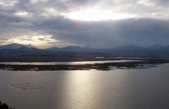 Michoacán: urge proteger humedal sur del lago de Pátzcuaro (Cambio)