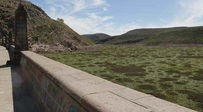 San Luis Potosí: Presas de la capital se quedan sin agua (Pulso)