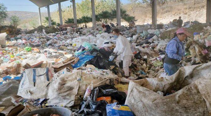 Oaxaca: Reconoce ONU proyecto de reciclaje en Huajuapan (Diario Marca)