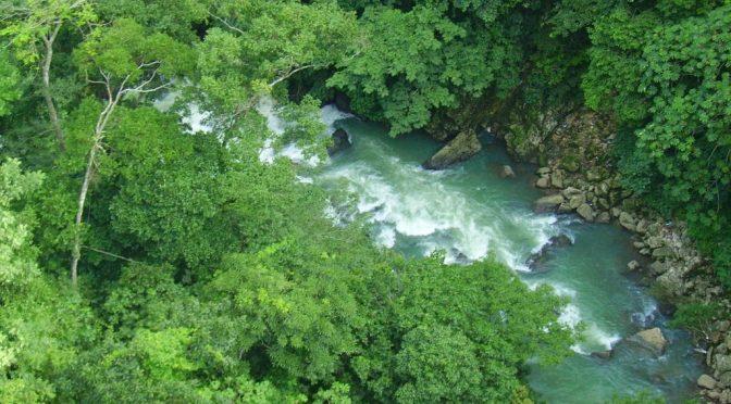 Veracuz: 'Agoniza' río Chiquihuite (El Mundo)