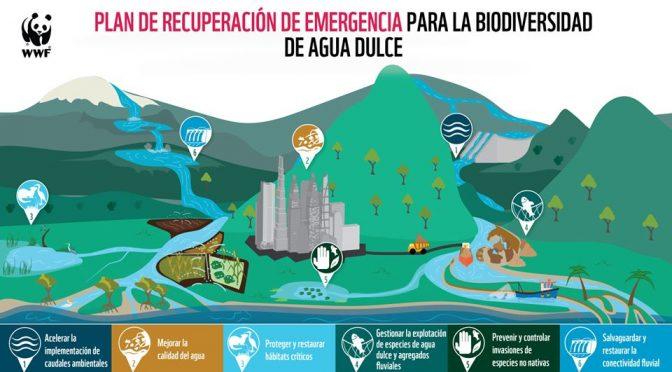 Reino Unido: Plan de Recuperación de Emergencia podría detener colapso catastrófico en la biodiversidad de agua dulce del mundo (WWF)
