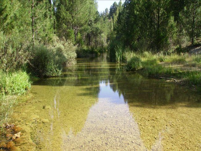 Valor de la restauración de ríos cuando se vive cerca y lejos. La Cuenca de Atoyac en Puebla, México