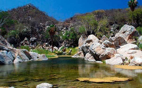 Coahuila: Exploran mantos acuíferos (La Voz)