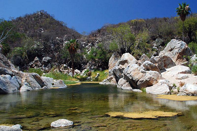 Actualización de la disponibilidad media anual de agua en el acuífero Valle de Puebla (2104) Estado de Puebla