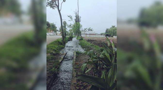 Veracruz: Sin agua unas 6 mil familias (El Mundo)