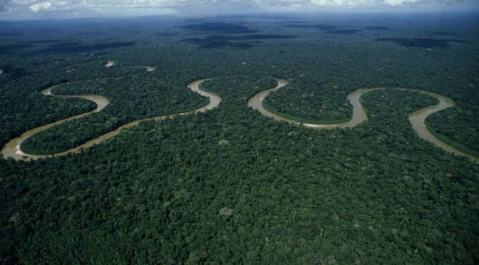 ¿Cómo detener la pérdida de biodiversidad de agua dulce? (El Espectador)