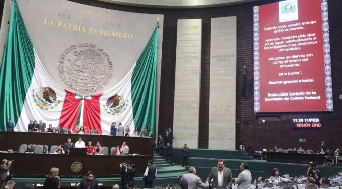 México: Irreversible, el impacto que el hombre ha causado en la naturaleza (Talla Política)