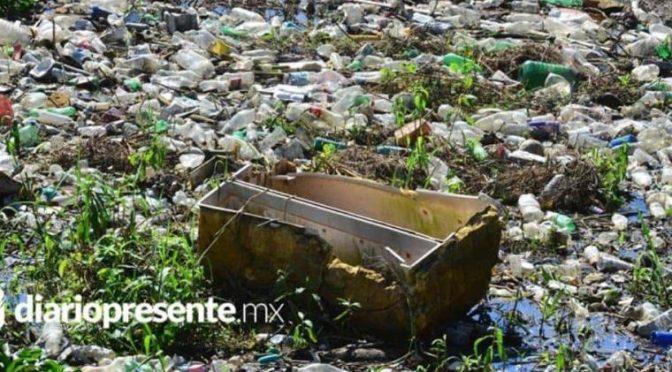 Tabasco: Se generan más de 2 mil 300 toneladas de basura diarias (Diario Presente)