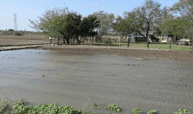 Tamaulipas: prometen no desfogar presa hacia el Bravo (El Mañana)