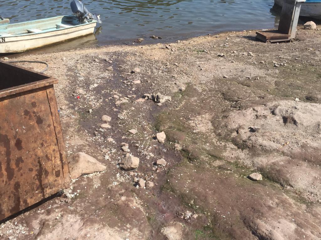 Nayarit: Comunidades del estado afectadas por el Río Santiago (MVS noticias)
