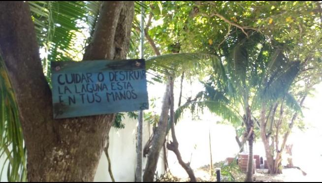 Arturo Bayona busca convertir a Quintana Roo en santuario mundial de estromatolitos (La Jornada Maya)