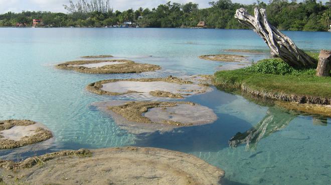 Quintana Roo: un tesoro ecológico