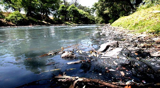 Tlaxcala: La contaminación de los ríos Zahuapan y Atoyac (El Sol de Tlaxcala)