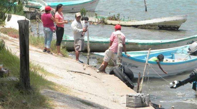 Veracruz: Se desploma producción de especies en laguna de Tamiahua (La Opinión de Poza Rica)