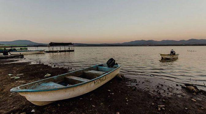Querétaro: producción de pescado en La Estancia a la baja (El Sol de San Juan del Río)