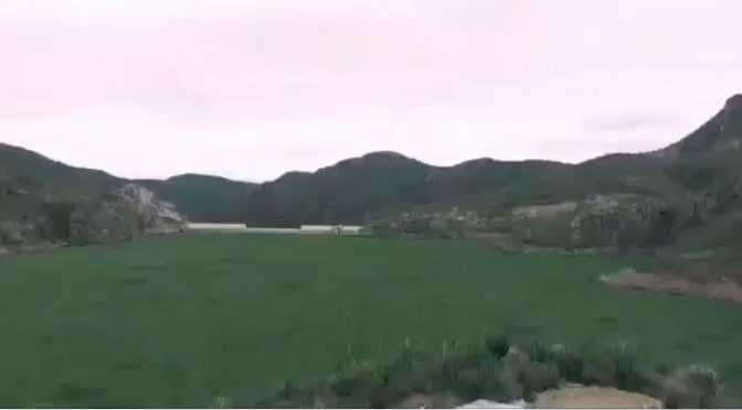 San Luis Potosí:  Presa el Realito se contamina con lirio y mata fauna de la zona (Código San Luis)