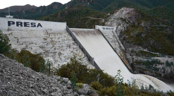 San Luis Potosí: Presa El Realito también está llena de lirio acuático; CEA (Código San Luis)