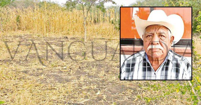 Veracruz: Se aproxima sequía severa en la Huasteca (Vanguardia)